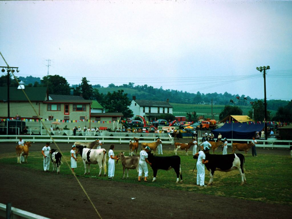 1950s_farm_and_fair-0022_sm-jpg