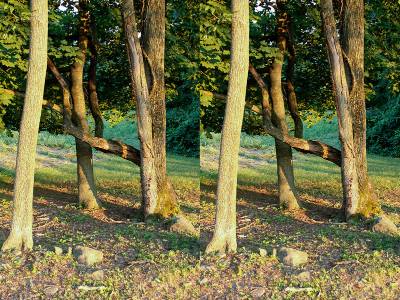 Stereo images from Quarry Dr. 1